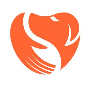 ARS Logo_n