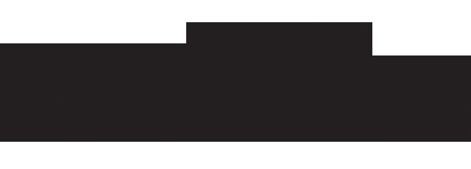 nyu-stern-logo